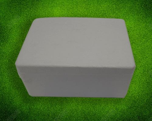 松茸(两斤箱)